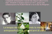 La terapia oncologica nella medicina antroposofica. L'esperienza clinica nell'uso del vischio